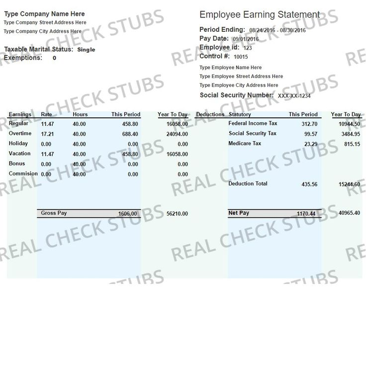 23 best State of Nevada Sample Apostille images on Pinterest - paycheck format