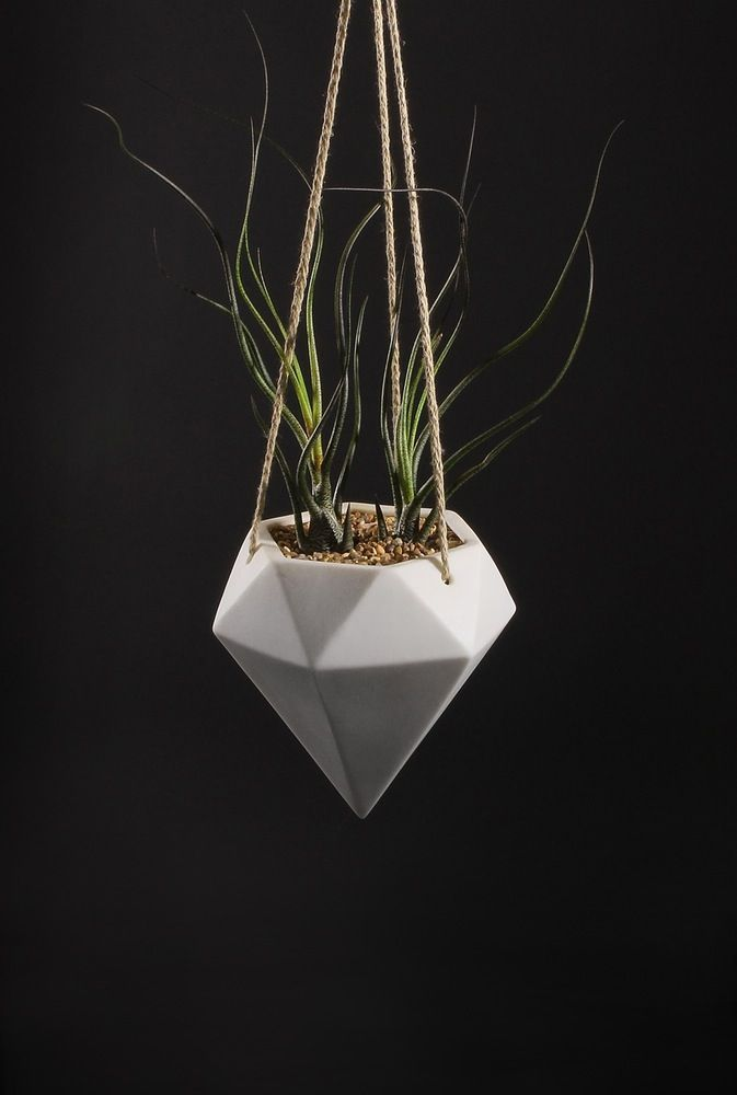 Cord hung Diamond shaped planter. Availible in White