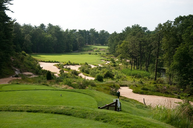 pine valley gives me pine wood   Golf courses, Golf, Pine ...