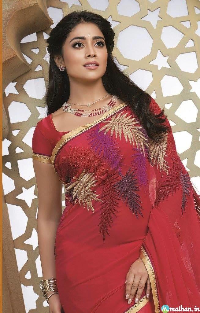 Shriya saran Fashion Saree Collection - shriya-saran-Saree-3 Shriya saran Fashion Saree Collection