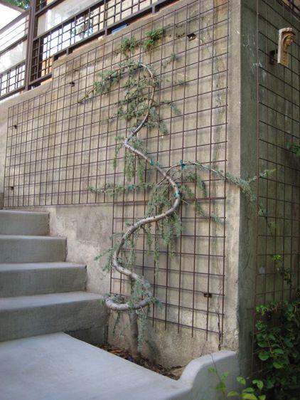 Great trellis using hog wire garden design pinterest for Wire garden trellis designs
