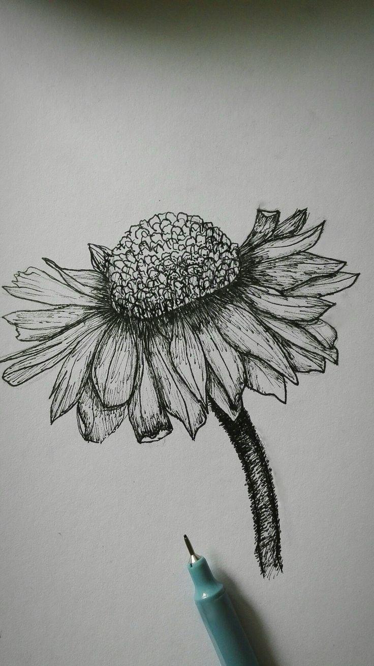 Art, black and white, flower, pen,