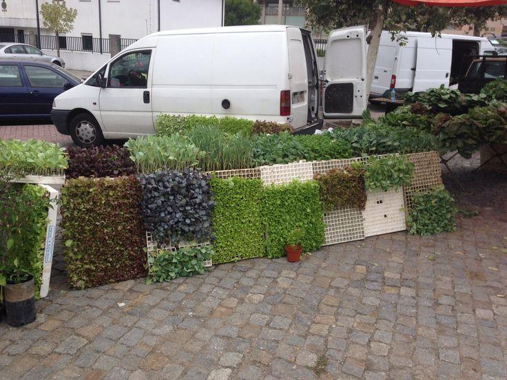 Salatbuffet in Vizela #portuguese salad buffet