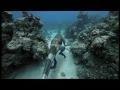 Video - Monster Laut Prasejarah - Bagian 1