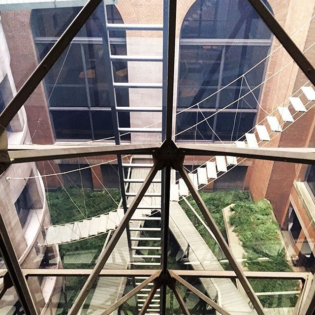 through the window you can see atelier bow-wow's 'piranesi circus' intervention in the inaccessible courtyard of the #chicago cultural center. a #suspended #bridge hangs for imaginary circus performers. #atelierbowwow @josephgrima @sarahherda  follow us for #ChicagoBiennial coverage! #architecture