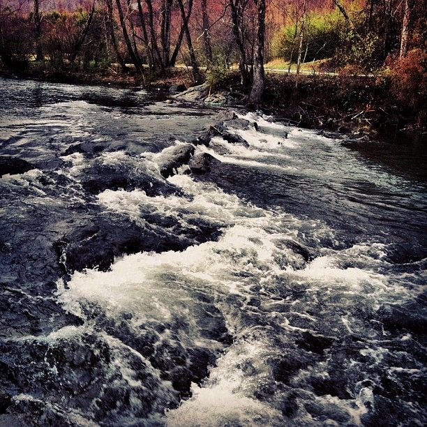 312 best helen city georgia u s a images on pinterest for Trout fishing in helen ga