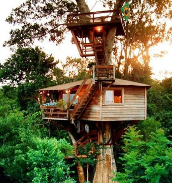 19 Best Images About Architecture Tree Houses On