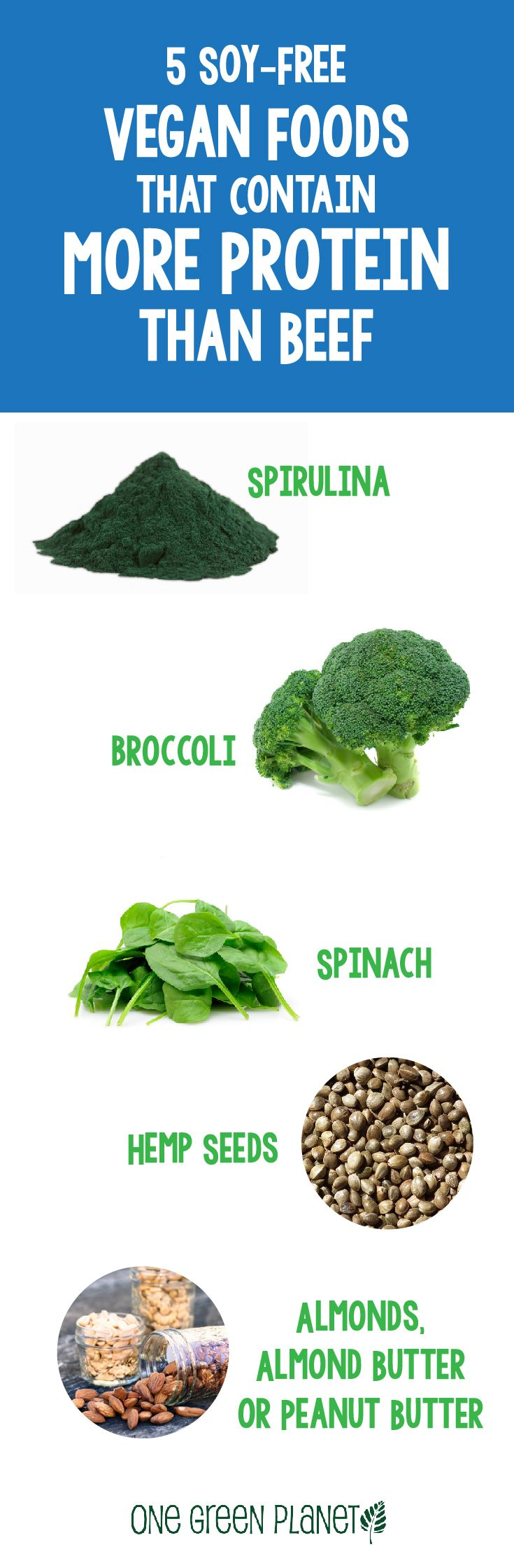 Which Vegetables Contain Protein 78 best plant protein images on pinterest vegan recipes healthy 5 foods that have more protein than what can be found in beef this is workwithnaturefo