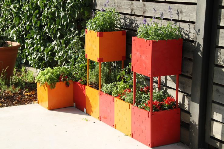 A new garden in red and yelow