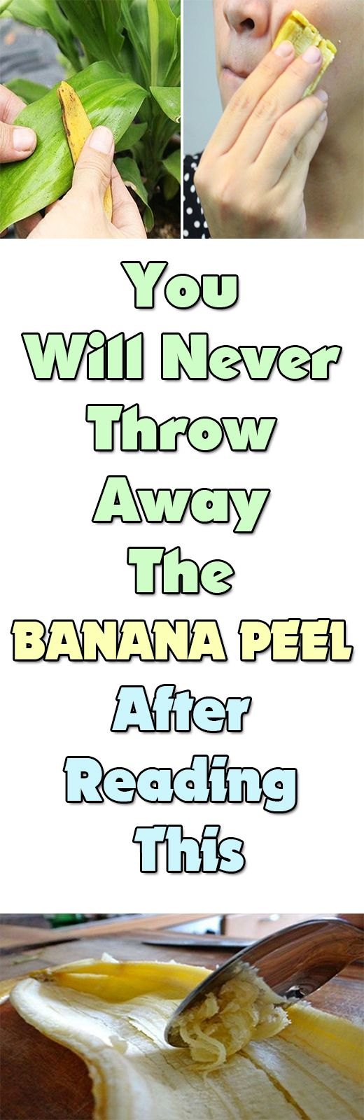 You Will Never Throw Away The Banana Peel After Reading This  Banana peel contains antifungal, antibiotic and enzymatic properties that can be put to good use. It is high in vitamins B6, B12, magnesium and potassium. Plus they're moist and they're nutritious.