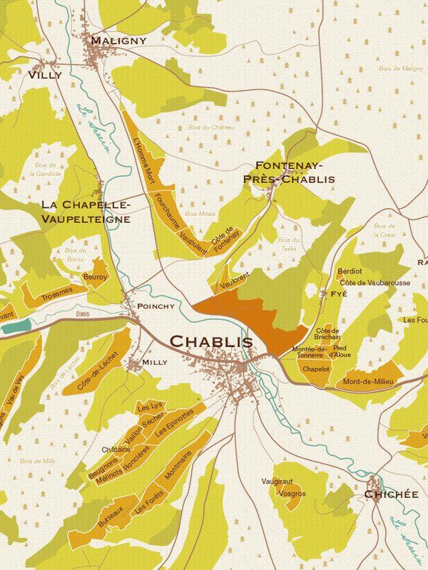 Chablis vinyards