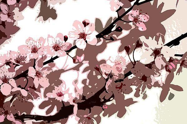 68 besten Cherry Blossoms Bilder auf Pinterest | Kirschblüten ...