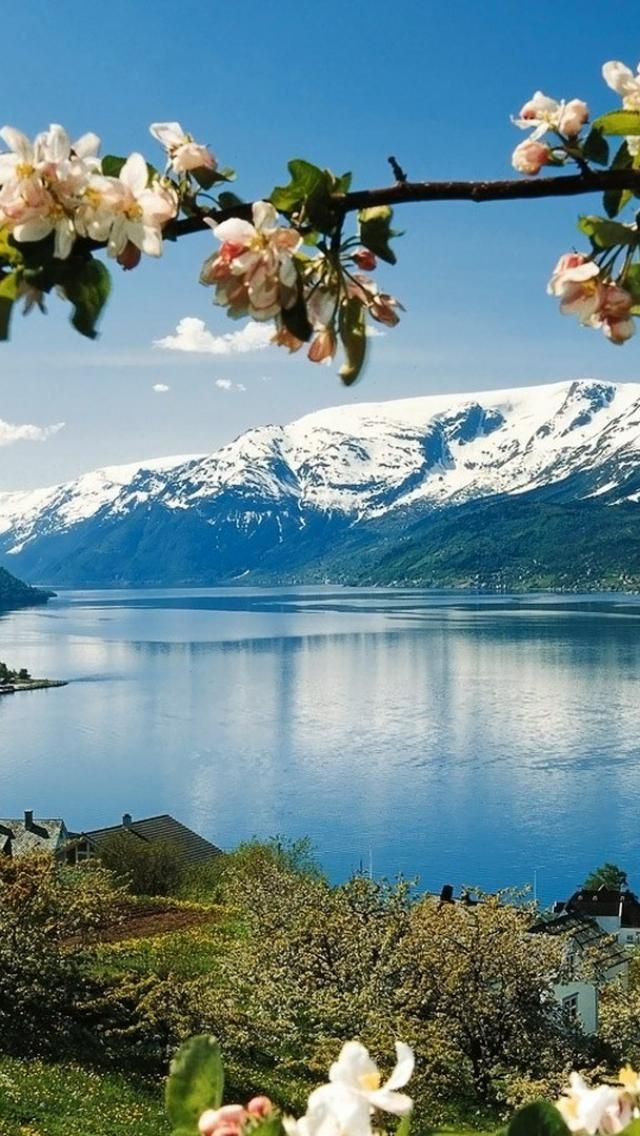 Norway. Hardangerfjord and mountains in springtime #norway #fjord