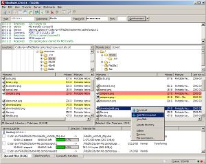 A great free FTP client. FileZilla. Windows, Linux, OSX support for the client. A free FTP server for Windows is also available.