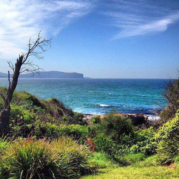 Batemans Bay, New South Wales #Australia     by roadtrip_australia (instagram)