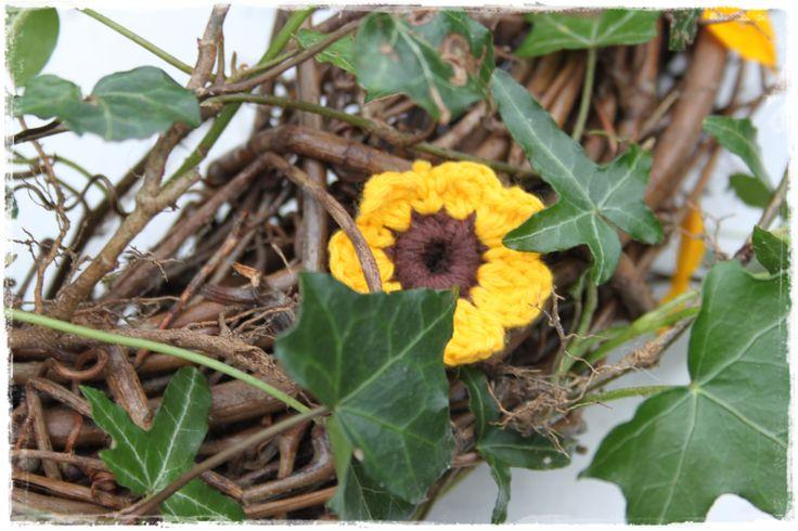 Zonnig bloemetje tussen  klimop