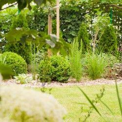 Ogród znajdujący się na niewielkiej działce wokół domu jednorodzinnego we Wrocławiu autorstwa pani Karoliny Duś oraz Karoliny z pracowni Ogrodomania to pomysłowa i dobrze zaprojektowana przestrzeń. Więcej: http://sztuka-krajobrazu.pl/653/slajdy/jak-rozjasnic-niewielki-ogrod-projekt-z-wroclawia
