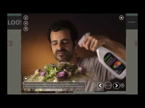 Presentación FLOOS - YouTube