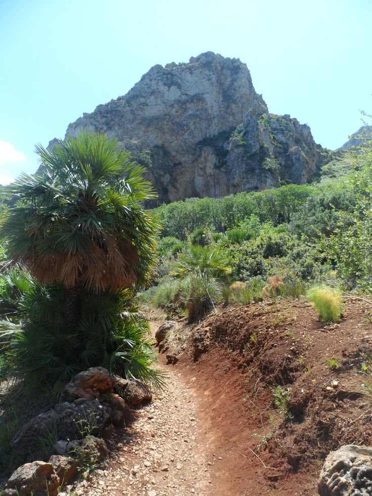 Zingaro Oriented Natural Reserve, TP, Sicily, going down to the coastal track, Pizzo Corvo 403 mt