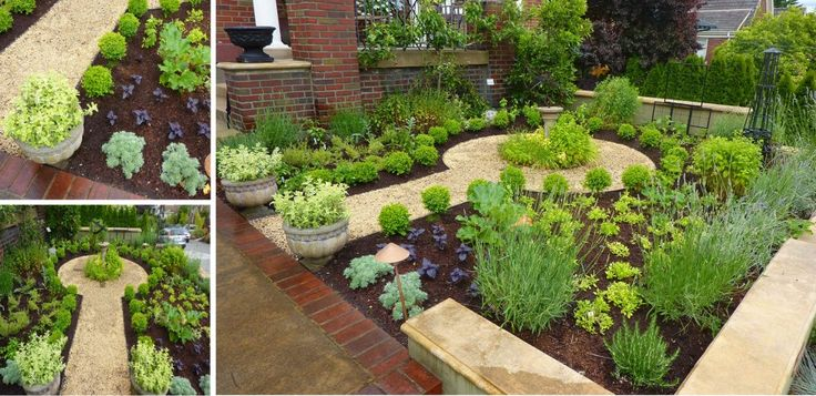 Formal Edible Front Yard Planted With Herbs And Veggies 640 x 480