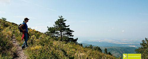 Sommet de l'Agra... Savourer l'instant. Contempler. Alpes de Haute-Provence. randonnée | Hiking