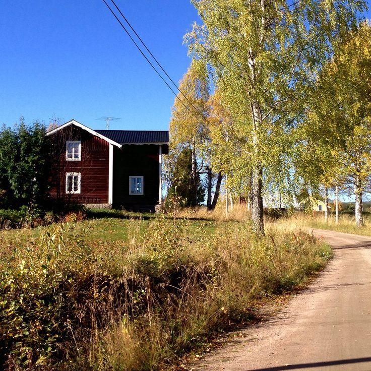 Skrubb Ängersjö - höst 2015