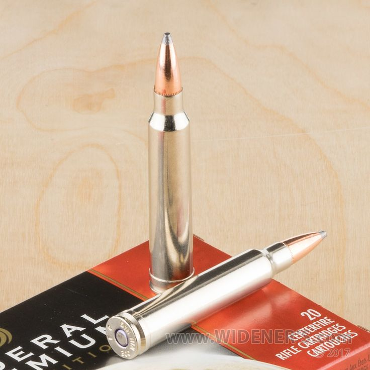 300 Win Mag Ammo for Sale at Widener's