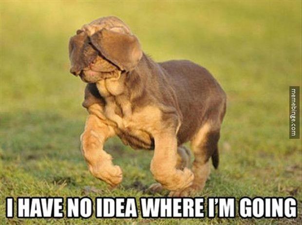 I have no idea where I'm going.