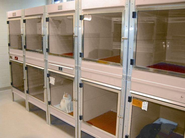 Jaula veterinaria de aislamiento modular de fibra de - Aislamiento fibra de vidrio ...