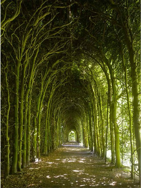 a-l-ancien-regime:  Weldam Castle,Overijissel,Netherlands © Country Life
