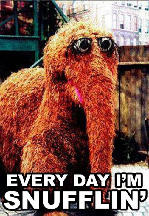Get it Snuffy.: Imaginary Friends, Sesame Street, Laugh, Parties Rocks, Stuff, Big Birds, Funny, Things, Snufflin