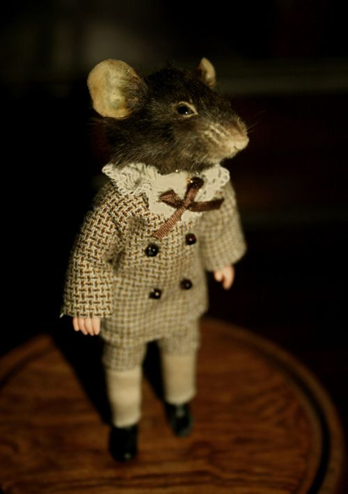 .Mice, Mouse, Taxidermy, Bakers Street, Children, Suits, Apples, Animal Photos, Teas Parties