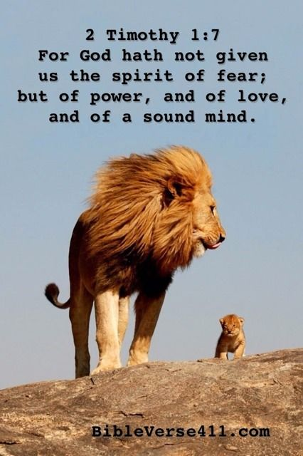 For God has not given us the spirit of fear; but of power, and of love,and of a sound mind.  2 Timothy 1:7 Bible Verse 411