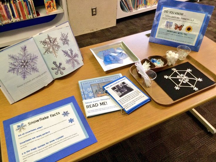 Nature Center Snowflake Study | Sturdy for Common Things