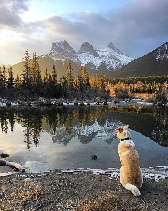 Rockies Canada |  Jasper Say Yes To Adventure