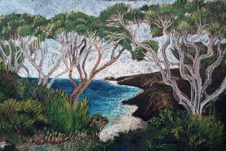 Drawings and paintings of Yallingup Western Australia are recognisable  because of the unique environment. These trees only grow in Cape Naturaliste W.A.
