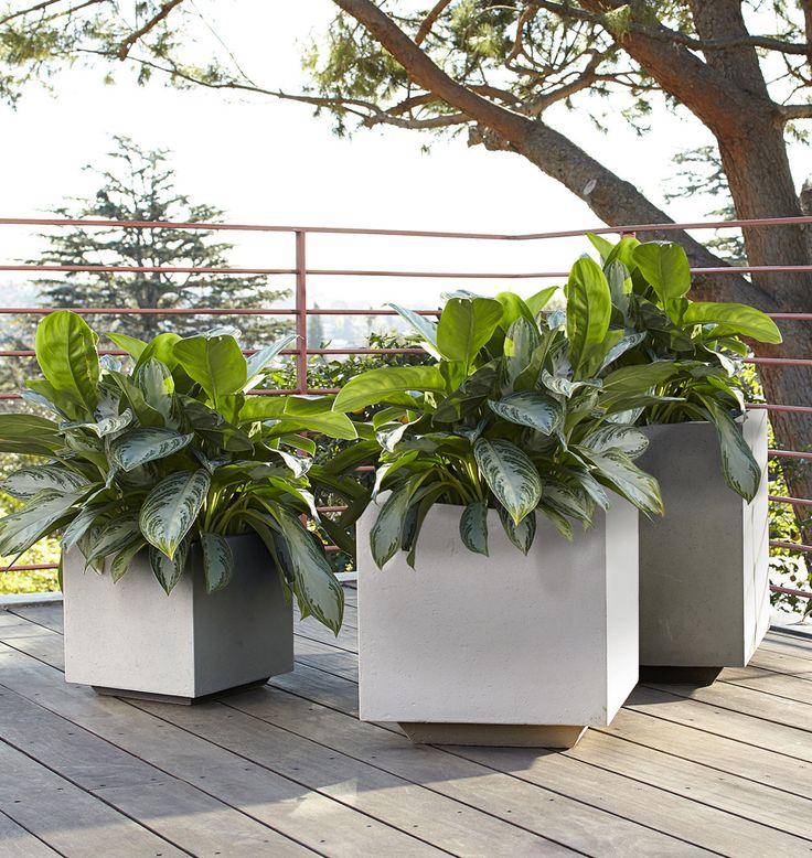 Gray Modern Square Planter, $119 $179, Rejuvenation