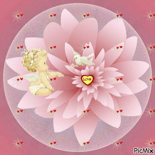 GIFS HERMOSOS: flores enontradas en la web