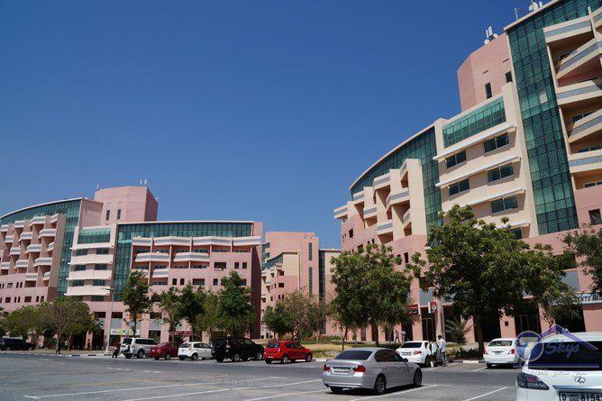 152ffbc16a2631fa382174f499ab753f - Apartment For Rent In Discovery Gardens Dubai