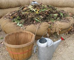 The combination of dead vegetation with air and moisture will result in compost. Composting is natural decomposition. Composting can take place in a simple