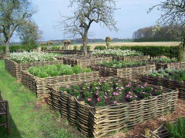 Raised beds from branches.