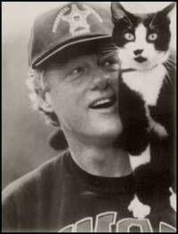 "Presidential Cats: Fun ""First Feline"" Facts #cats #presidential cats"