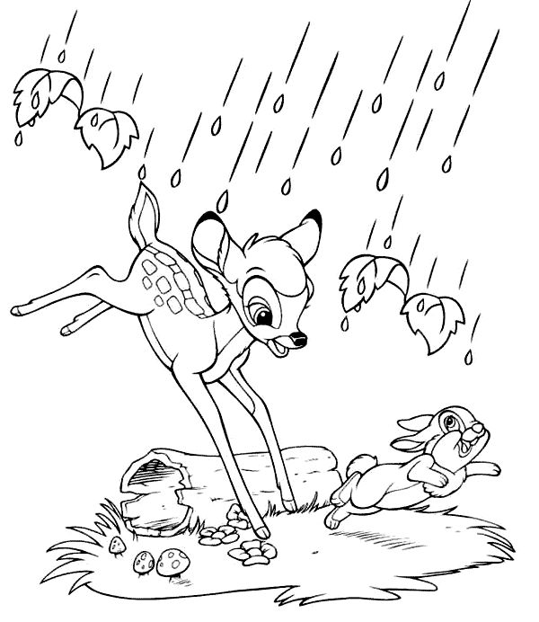 Find This Pin And More On Disney Bambi Coloring Pages By Metalmavin