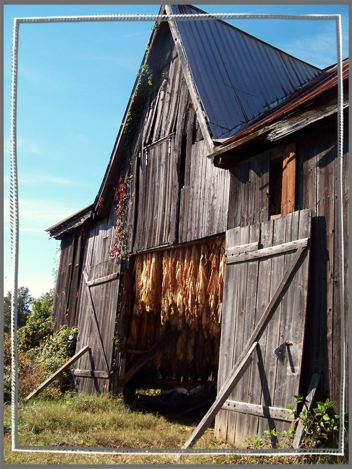 2318 Best Barns Images On Pinterest Country Life