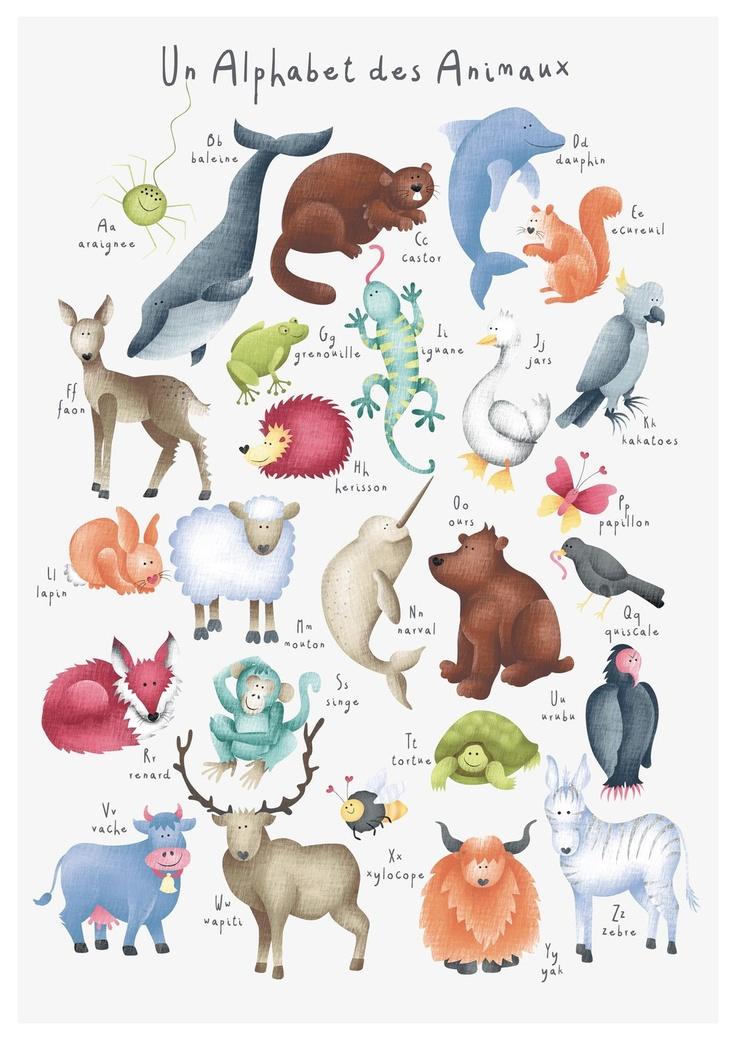 Hannah Weeks Childrens Illustration Animaux Des Alphabet