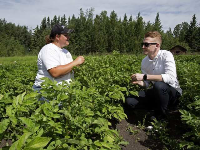 Where can I get that? Chef Ben Staley puts Vesta Gardens on the plate