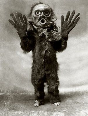Photo c.1914  North American Indian ceremonial costume of 'Hami' (dangerous thing) worn by a Koskimo person.