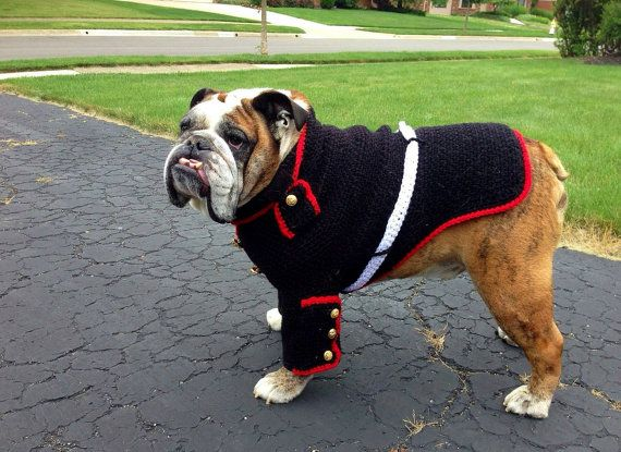 Bulldog Marine dress blues English bulldog by conniemariepfost, $160.00