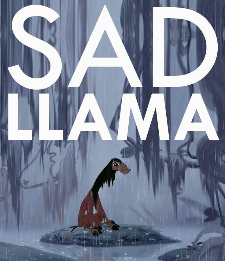 Happy Llama, Sad Lama, Drama Llama, Mentally-disturbed Llama... I forget the rest...