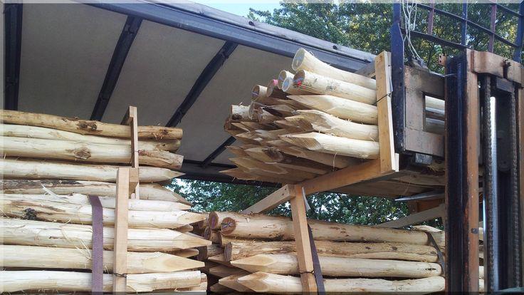 Geschälte Holzpfähle für Gartenbau